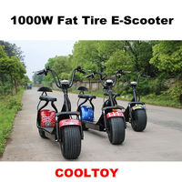 High Quality City Fat Tire 1000W Electric Scooter Two Wheels