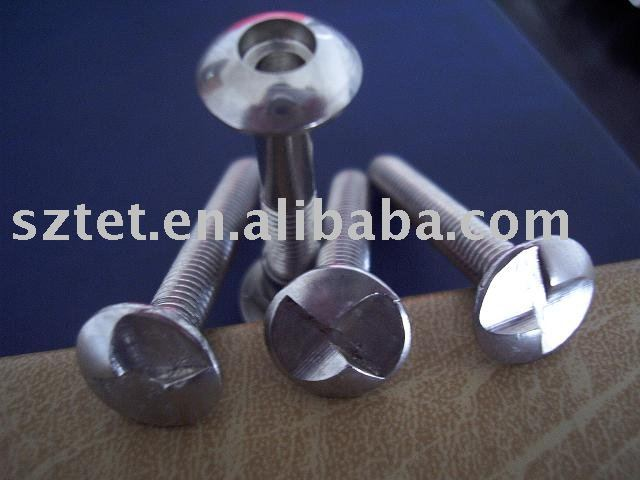stainless steel different type One way screw