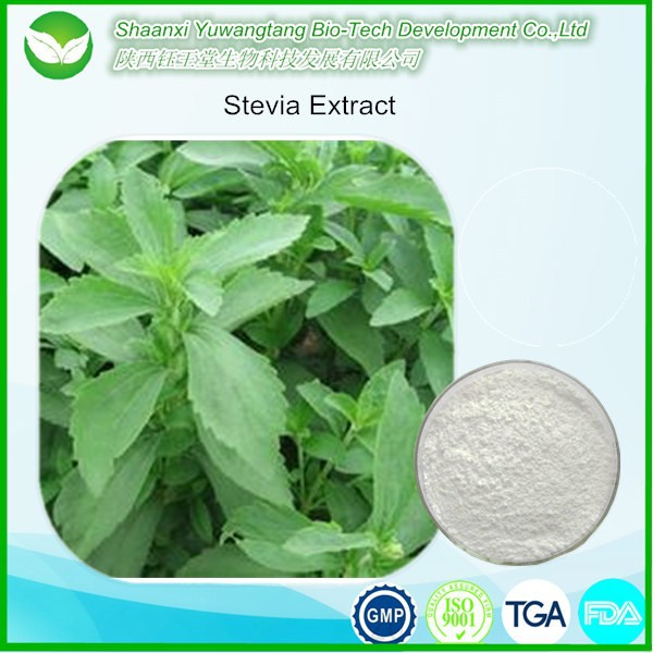 Health food additives natural stevia extract