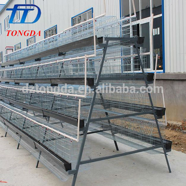 Hot selling wire mesh bird cage with low price
