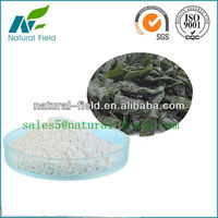 high quality Laminaria japonica extract fucoidan
