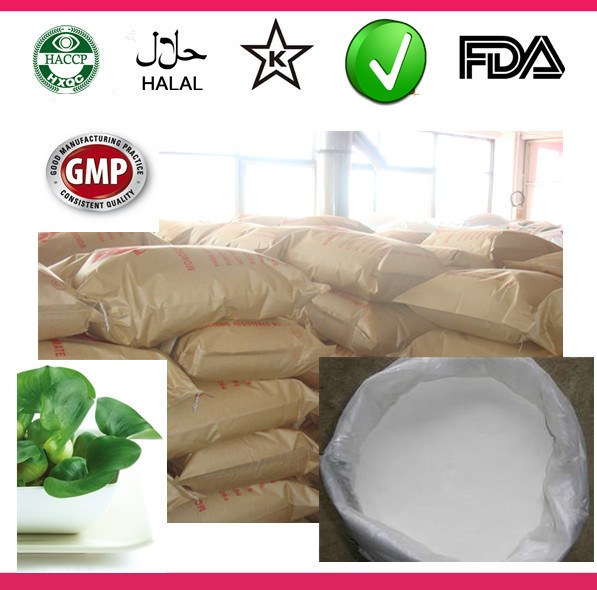China high quality dry natural stevia leaves stevioside powder