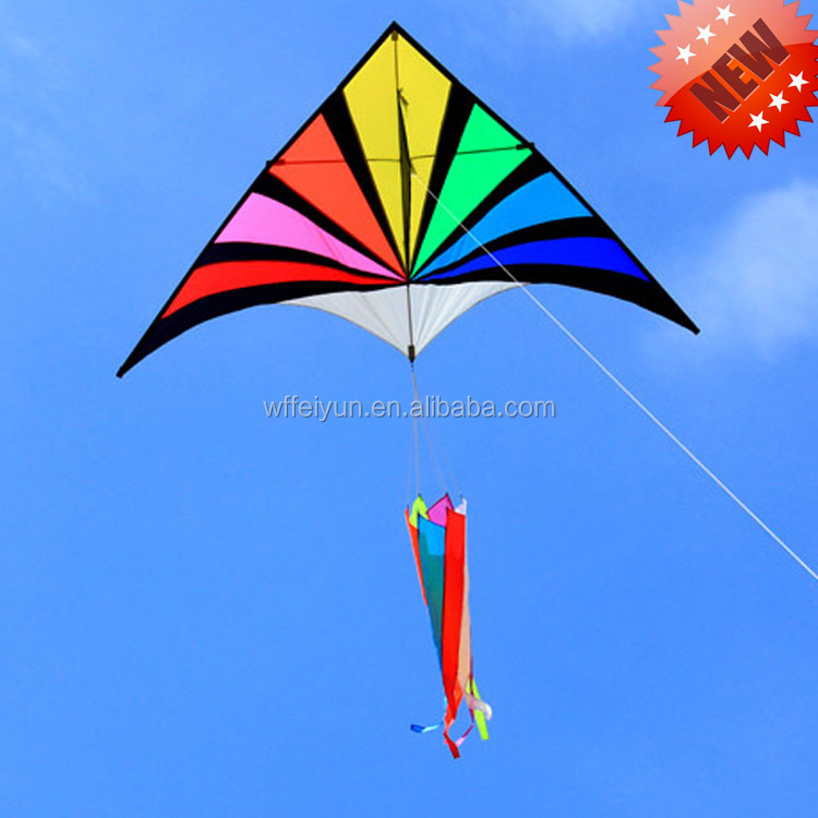 Weifang New product large delta rainbow kite for sale from the factory