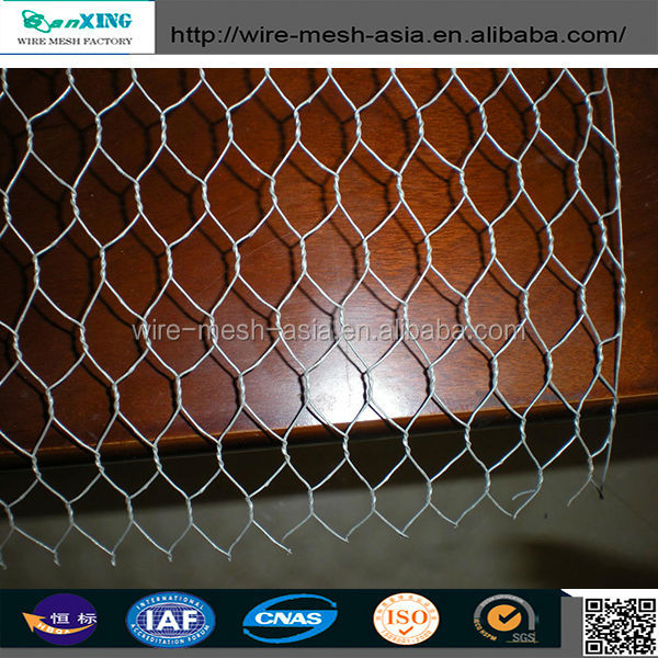 galvanized and pvc coated bird animal cages hexagonal wire mesh / chicken wire mesh (professional direct factory&manufacturer)