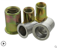 Hex Rivet Nut With Zinc Plated