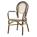 Patio bamboo chair, leisure plastic chair, outdoor wicker chair(TG0142T-12)