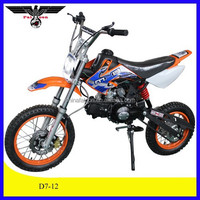 China Apollo 110CC Mini Bike Kids Pit bike 110cc dirt bike Automatic (D7-12)