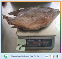 High Quality Sea Fish Import Black Tilapia and Red Tilapia