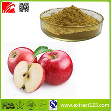 Hot sale Organic apple polyphenols extract powder