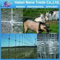Competitive Price New Design 2X4 Decoration farm Fence wire