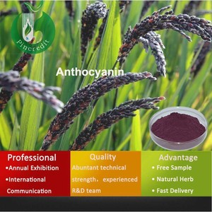 Anthocyanin 25% from Black rice extract