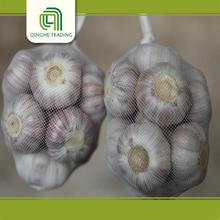 Hot selling chinese fresh garlic garlic with low price