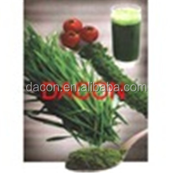 Wheatgrass Powder 270 mesh