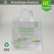 Ecological Biodegradable Promotion non woven carry bags