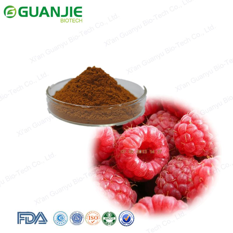 Factory Offer Raspberry Fruit Extract / Raspberry Seed Extract / 4% Raspberry ketone