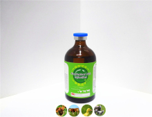 Injection Cattle veterinary drugs injectalbe hexie brand Florfenicol 10%