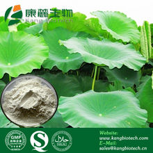 Natural slimming products Lotus Leaves extract/nuciferine