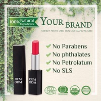Own brand tube packaging Pop out your skin tone multicolor lipstick
