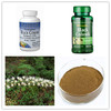 Herbal Supplements 100% Pure Black Cohosh Triterpene Glycosides Extract