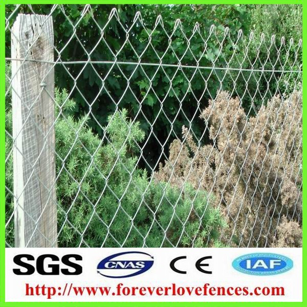 China Anping poulty netting hot sale chain link fence extension with post