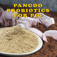 Sow pig probiotic acidophilus feed supplements