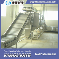 New Design automatically frozen french fries production line