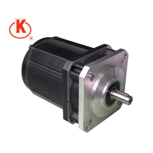 110 volt 60Hz 55mm 4.8rpm 4.1N.m electric synchronous motor