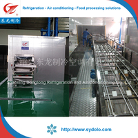 tunnel freezer/fruit and vegetable frozen processing freezing machines/tunnel blast freezer