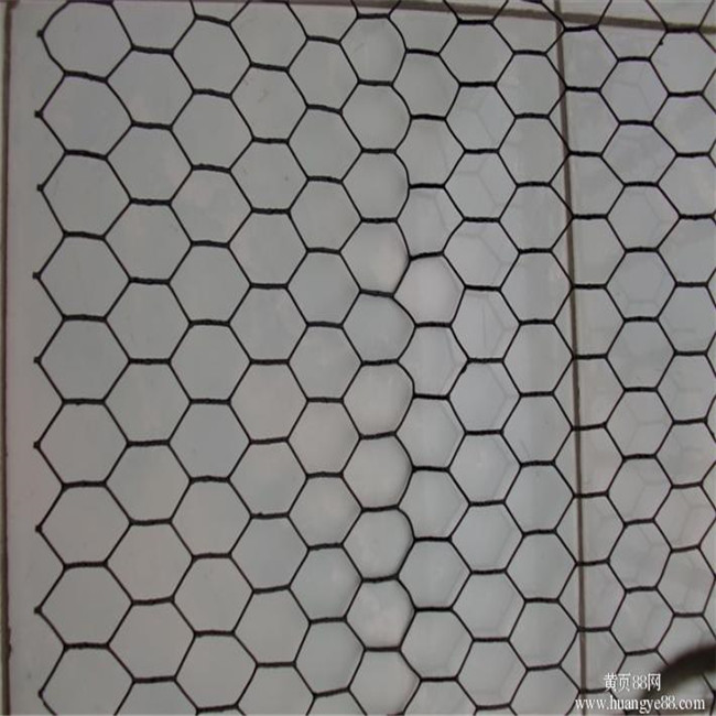 Hexagonal Wire Mesh/Chicken Poultry Farm Fence/Chicken Wire Netting