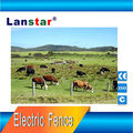 Solar power electric fencing for chicken farm electric fence