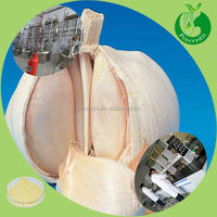 Chinese herbal extract garlic extract allicin powder