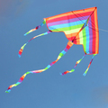 Long tail color kites/ rainbow delta for sale