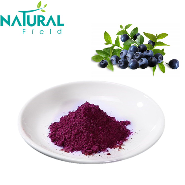 Chinese Whole Sale Blueberry Freeze Dried Powder