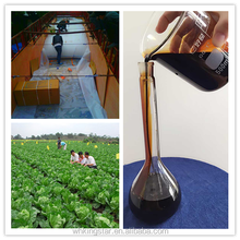 Supreme Carob Sugar Beet Molasses Manufacturer