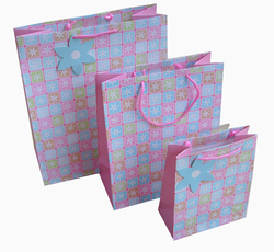Promotional Cutom Packaging Full Color Printed Paper Gift Bag