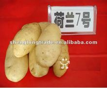 prices of fresh potato