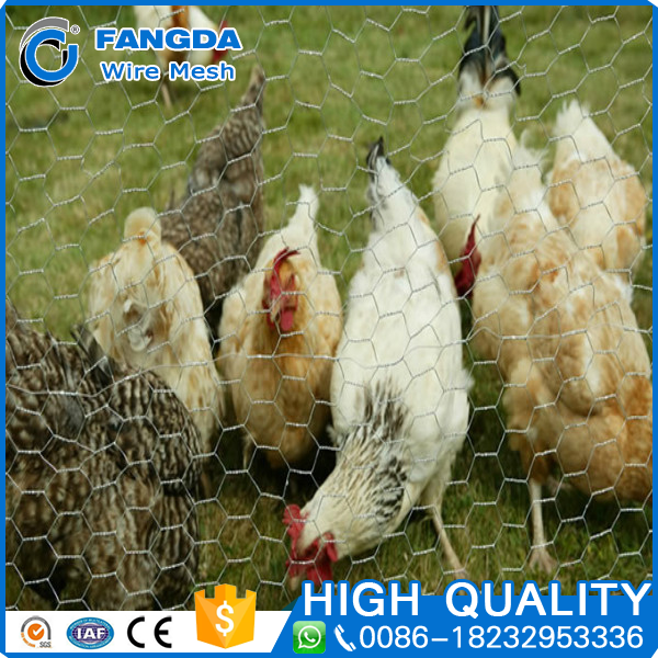 Factory direct pvc coated bird animal cages hexagonal netting