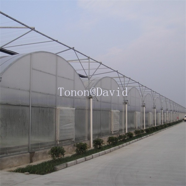Guangdong polycarbonate board supplier pc hothouse rubber with UV resist (TN2404)