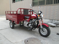 Motocicleta de tres ruedas/gas powered adult tricycle made in China