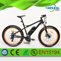 2016 fat tire chinese electric bike mid drive motor e bike/e bicycle for sale