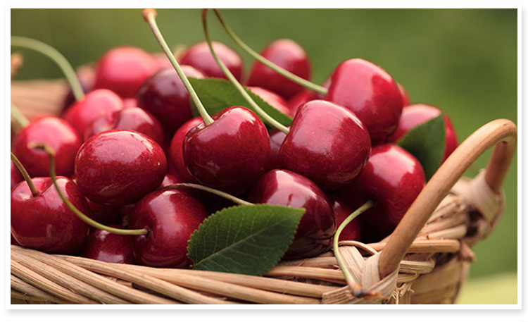 delicious fruit Fresh Cherry