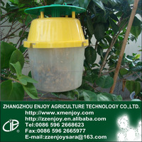 Bucket funnel trap pest pheromone killer