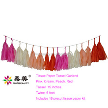 18th Birthday Party Decorations Pink Cream Peach Red Tissue Tassel Garland