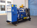 80kW Natural Gas Generator Set Made in China Shengdong