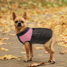 Best Selling Autumn Winter Pet Accessories Dog Clothes