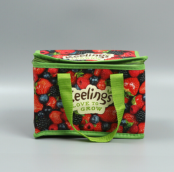 portable fruit protection insulated cooler bag