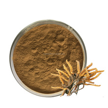 Factory supply Cordyceps Mycelia Extract Yarsagumba