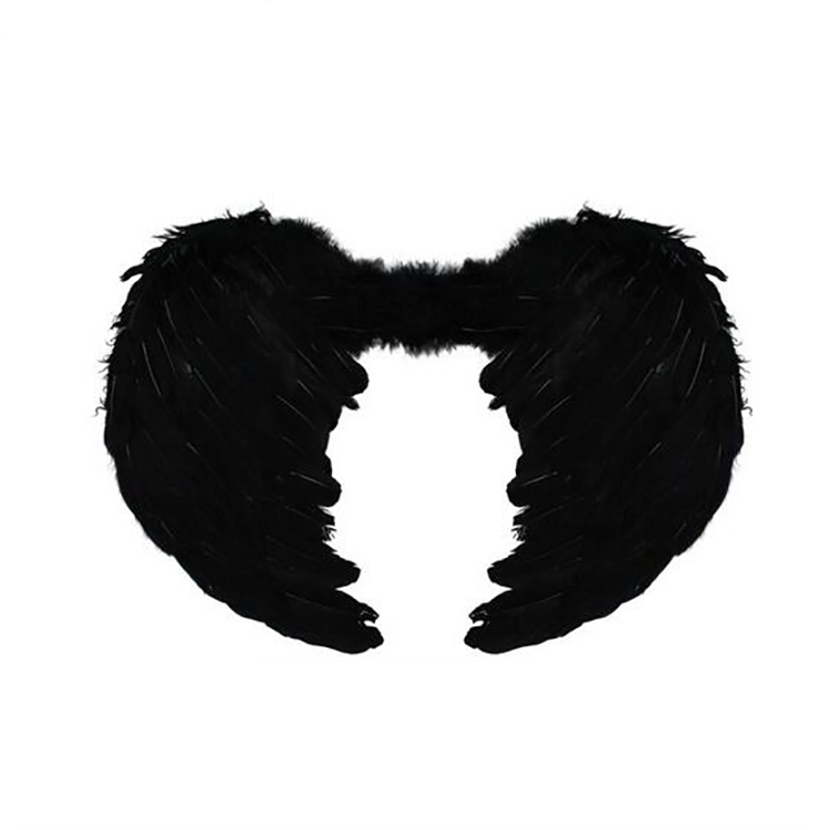 Feather Angel wing for Party Costumes and party cosplay