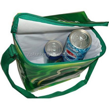 Custom reusable cheap clear beer cooler bag