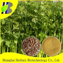 Celery seed extract,active ingredient Butylphthalide, Apigenin, 6:1, 10:1, UV TLC